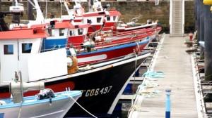 pesqueros-tradicionales-amarrados-en-el-puerto-imagen-del-documental-300x168