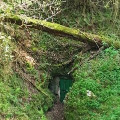 Entrada a la Cueva del Juyo