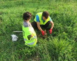Voluntariado ambiental en el Pozón de la Yesera- Anillo Verde Bahía de Santander