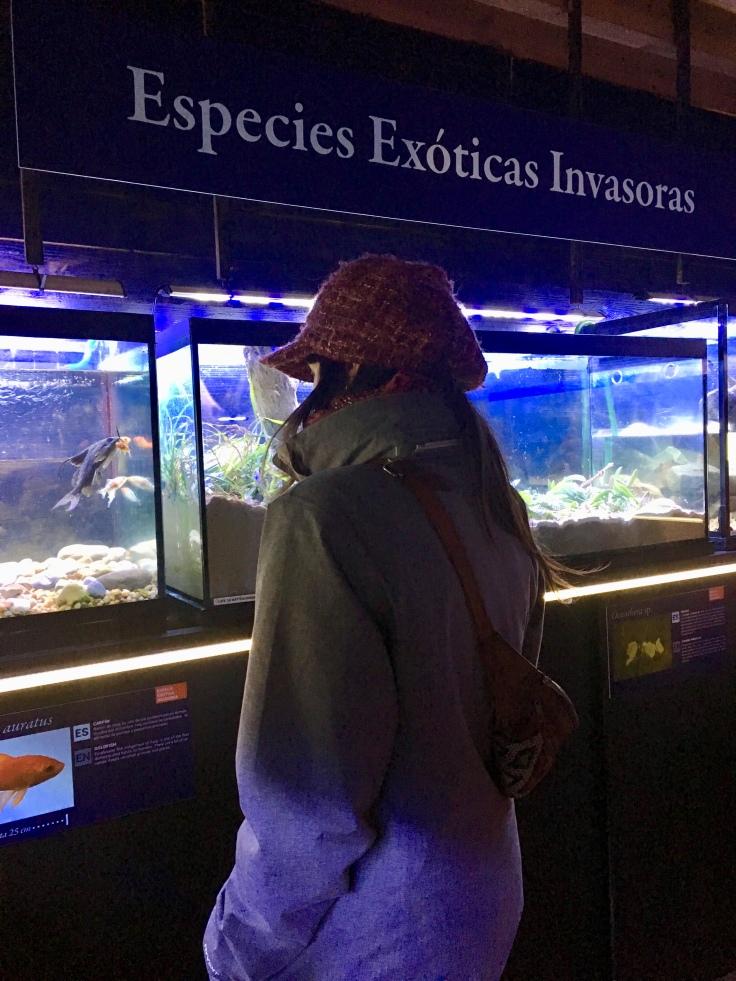 Observación de los acuarios de la planta principal